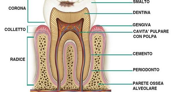 proteggere lo smalto dentale