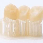 Resina dentale